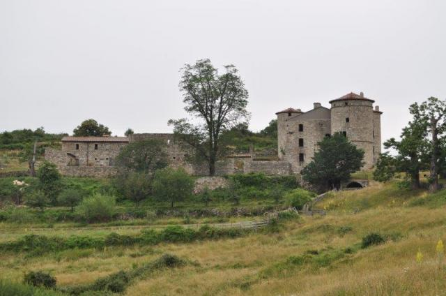 17.06.26.290.château de craux