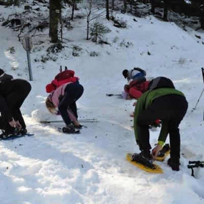 Sortie Raquettes Col du Bramont le 12-02-17