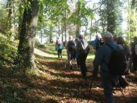 Sortie Pont à Mousson le 15-10-2017