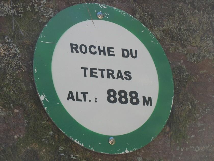 Img 3170